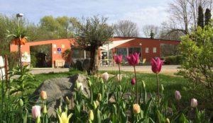 Camping 3 étoiles L'Etang des Forges – Belfort (90)