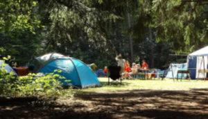 Camping La Boulinière – Boissy-le-Cutté (91)