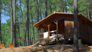 Camping 3 étoiles La Forêt – St Jean du Gard (30)